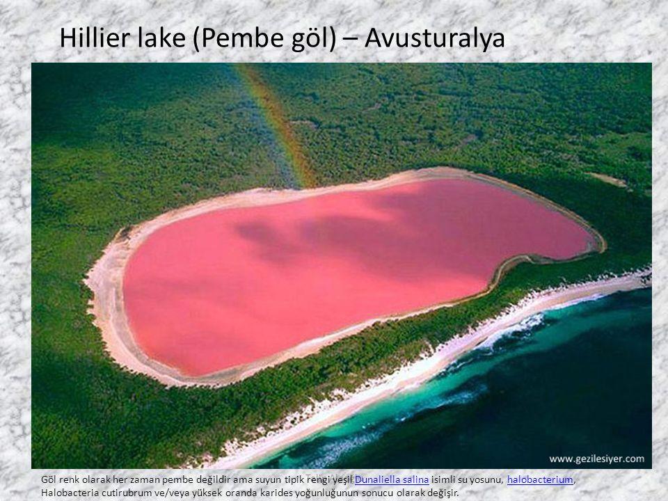 Hillier lake (Pembe göl) – Avusturalya Göl renk olarak her zaman pembe değildir ama suyun tipik rengi yeşil Dunaliella salina isimli su yosunu, halobacterium, Halobacteria cutirubrum ve/veya yüksek oranda karides yoğunluğunun sonucu olarak değişir.Dunaliella salinahalobacterium