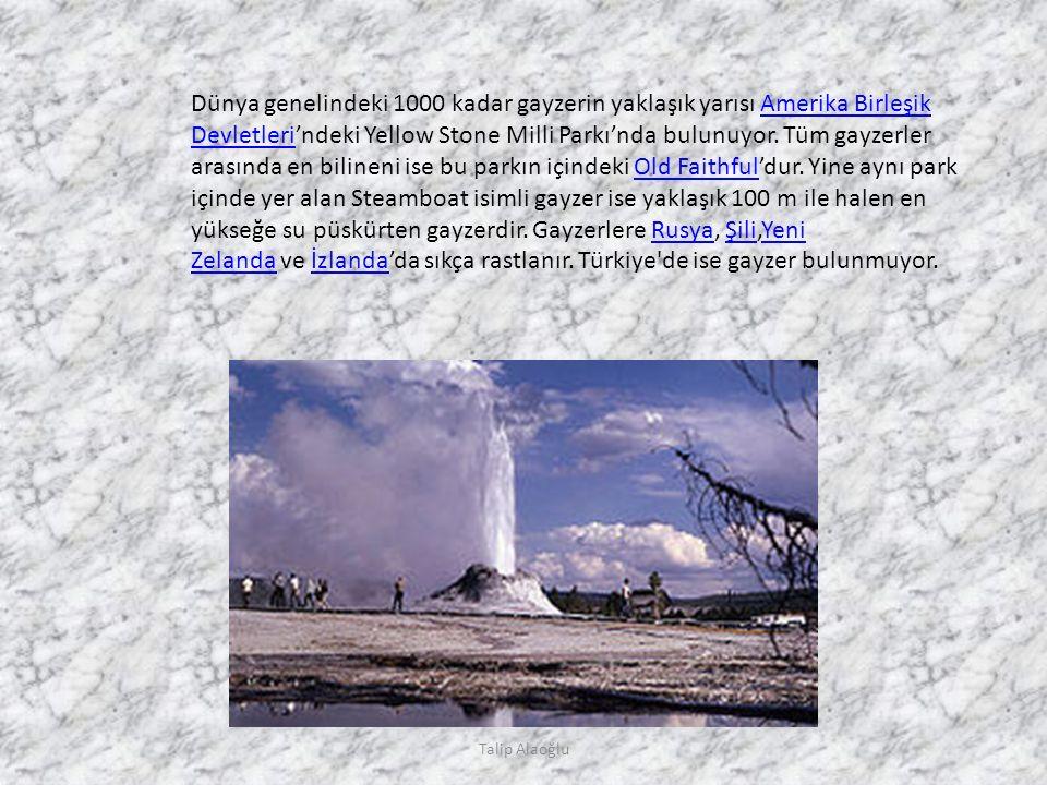 Talip Alaoğlu Dünya genelindeki 1000 kadar gayzerin yaklaşık yarısı Amerika Birleşik Devletleri'ndeki Yellow Stone Milli Parkı'nda bulunuyor.