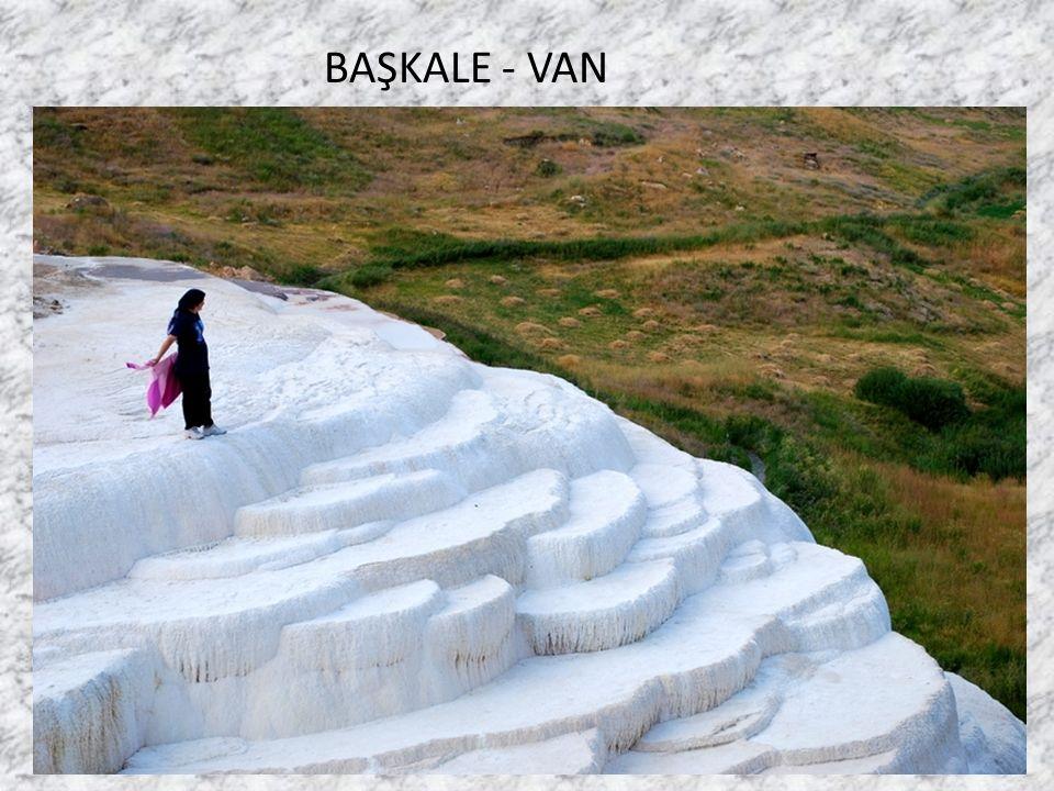 Talip Alaoğlu BAŞKALE - VAN