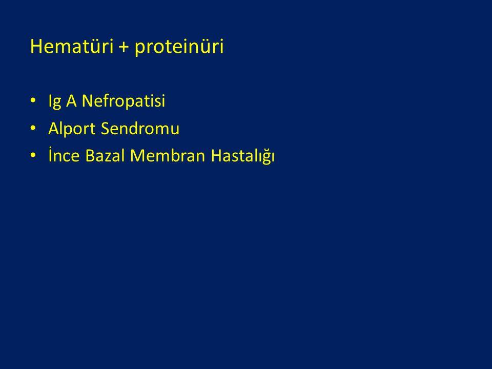 Hematüri + proteinüri Ig A Nefropatisi Alport Sendromu İnce Bazal Membran Hastalığı