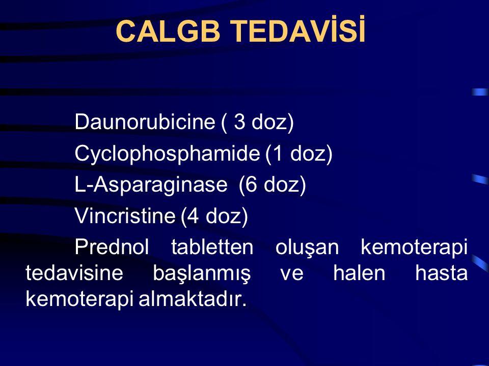 CALGB TEDAVİSİ Daunorubicine ( 3 doz) Cyclophosphamide (1 doz) L-Asparaginase (6 doz) Vincristine (4 doz) Prednol tabletten oluşan kemoterapi tedavisi