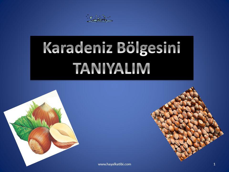 www.hayalkatibi.com22