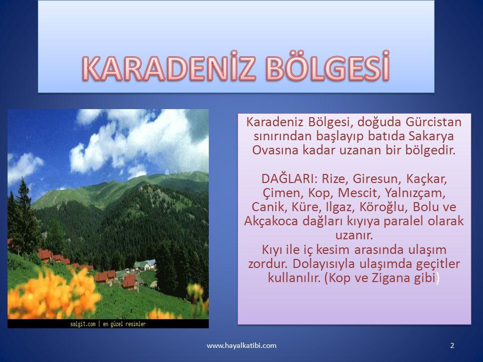 Gerçek alanı olan 143.537 Km2 ile Türkiye topraklarının %18'ini kaplar.