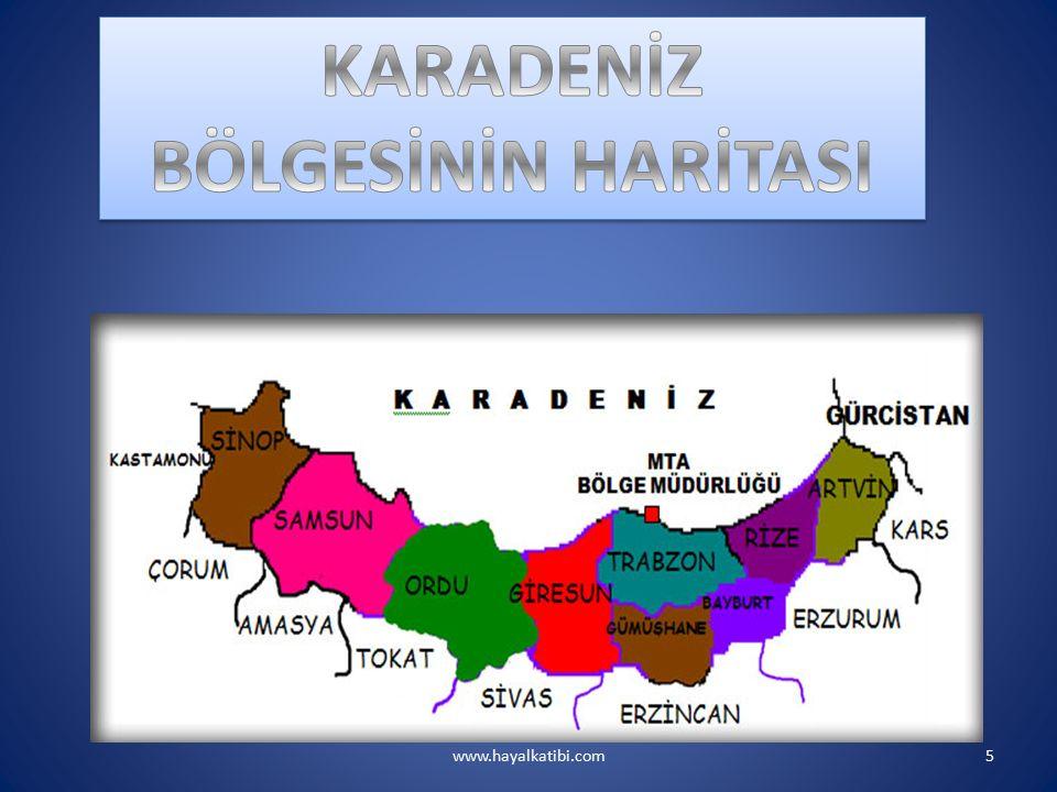 www.hayalkatibi.com16