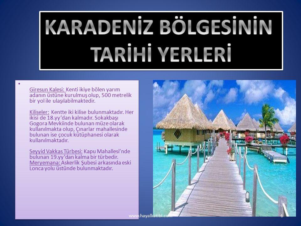 www.hayalkatibi.com17