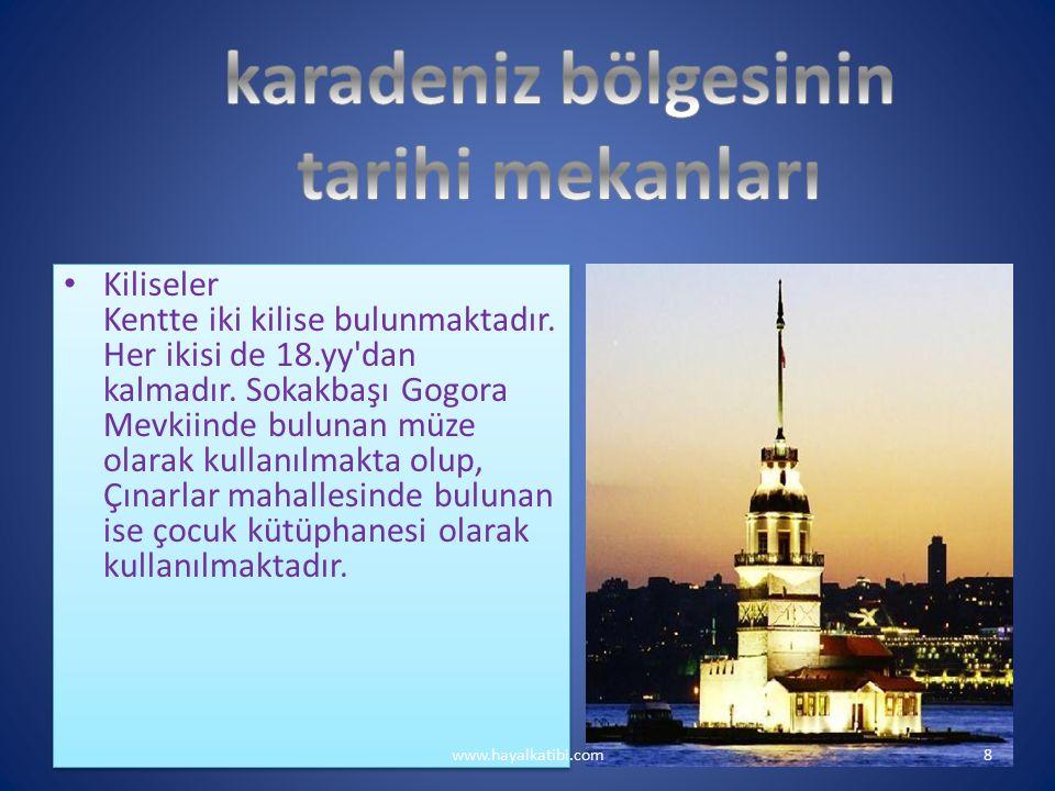 KARADENİZ BÖLGESİNİN EKONOMİK FAALİYETLERİ www.hayalkatibi.com19