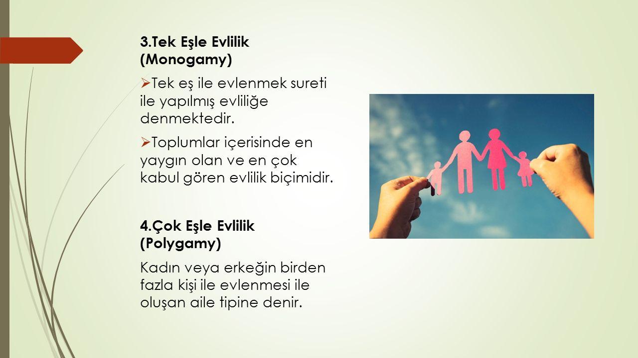 3.Tek Eşle Evlilik (Monogamy)  Tek eş ile evlenmek sureti ile yapılmış evliliğe denmektedir.  Toplumlar içerisinde en yaygın olan ve en çok kabul gö