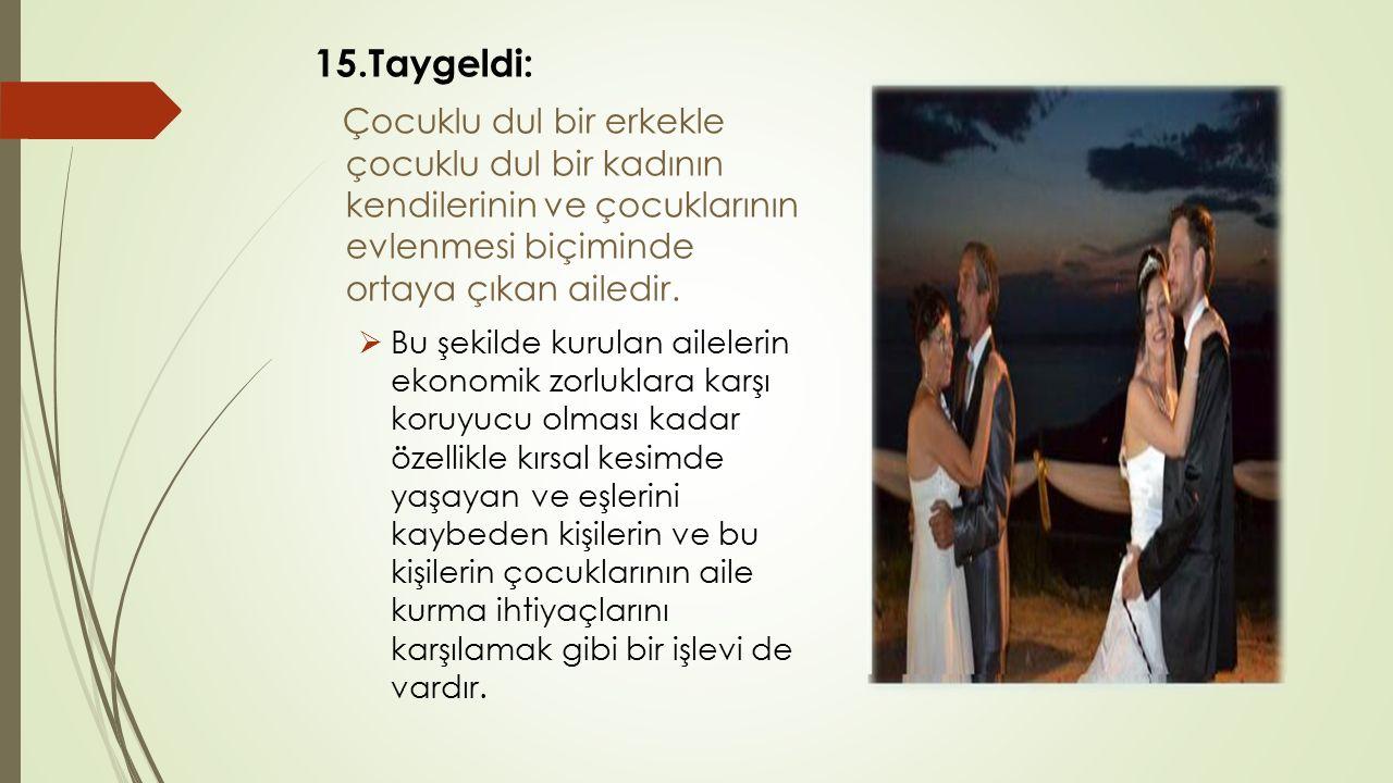 15.Taygeldi: Çocuklu dul bir erkekle çocuklu dul bir kadının kendilerinin ve çocuklarının evlenmesi biçiminde ortaya çıkan ailedir.  Bu şekilde kurul