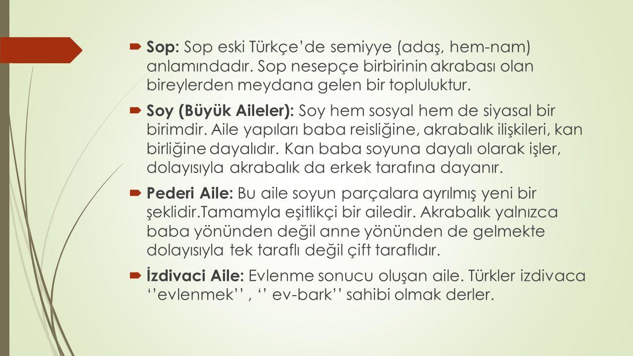  Sop: Sop eski Türkçe'de semiyye (adaş, hem-nam) anlamındadır. Sop nesepçe birbirinin akrabası olan bireylerden meydana gelen bir topluluktur.  Soy