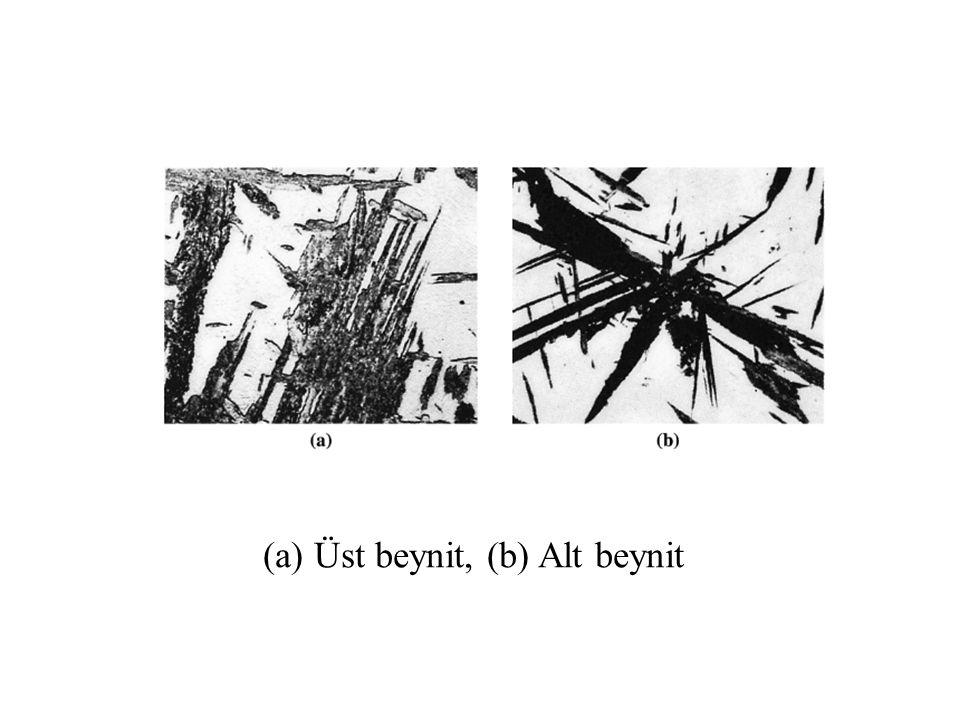 (a) Üst beynit, (b) Alt beynit