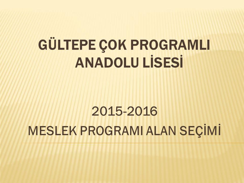 GÜLTEPE ÇOK PROGRAMLI ANADOLU LİSESİ 2015-2016 MESLEK PROGRAMI ALAN SEÇİMİ