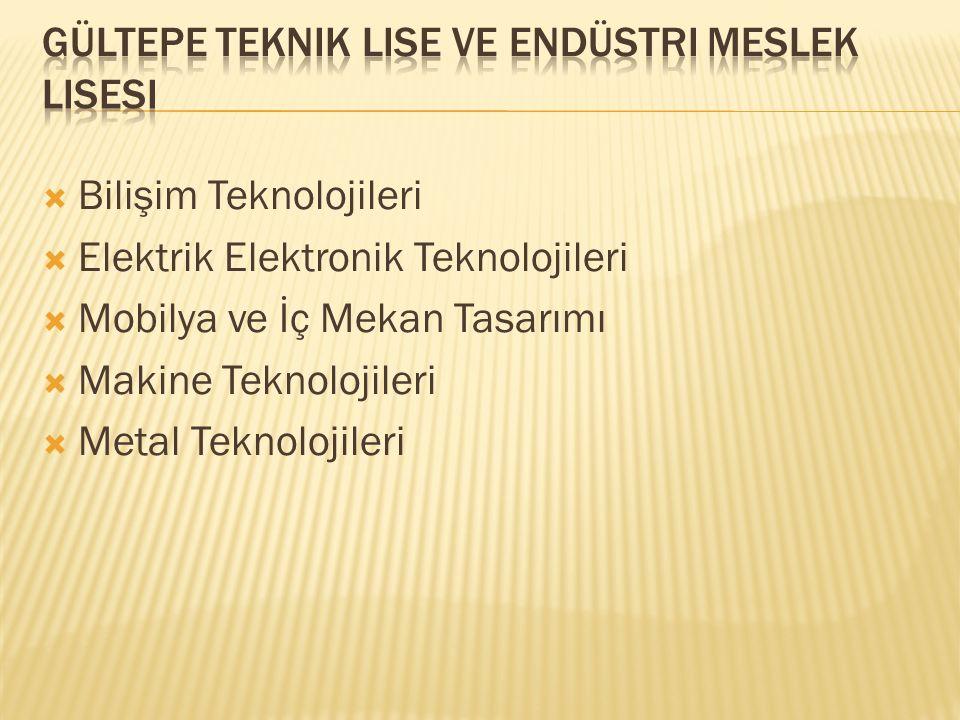  Bilişim Teknolojileri  Elektrik Elektronik Teknolojileri  Mobilya ve İç Mekan Tasarımı  Makine Teknolojileri  Metal Teknolojileri
