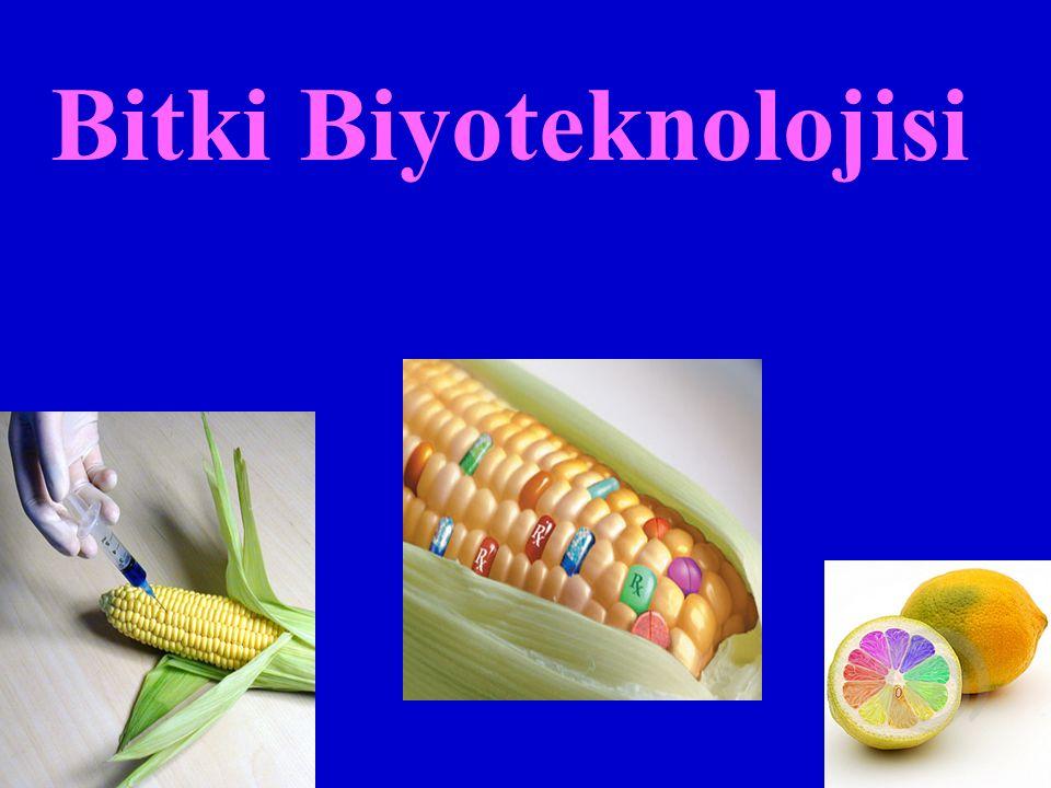 Bitki Biyoteknolojisi
