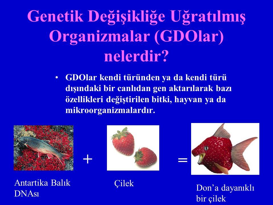 Genetik Değişikliğe Uğratılmış Organizmalar (GDOlar) nelerdir? GDOlar kendi türünden ya da kendi türü dışındaki bir canlıdan gen aktarılarak bazı özel