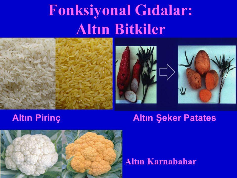 Fonksiyonal Gıdalar: Altın Bitkiler Altın PirinçAltın Şeker Patates Altın Karnabahar