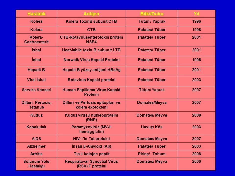 HastalıkAntijenBitki/DokuYıl KoleraKolera ToxinB subunit CTBTütün / Yaprak1996 KoleraCTBPatates/ Tüber1998 Kolera- Gastroenterit CTB-Rotavirüsenteroto