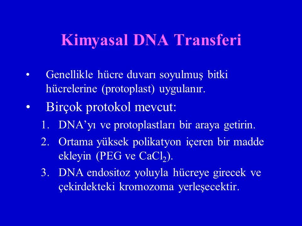 Kimyasal DNA Transferi Genellikle hücre duvarı soyulmuş bitki hücrelerine (protoplast) uygulanır. Birçok protokol mevcut: 1.DNA'yı ve protoplastları b