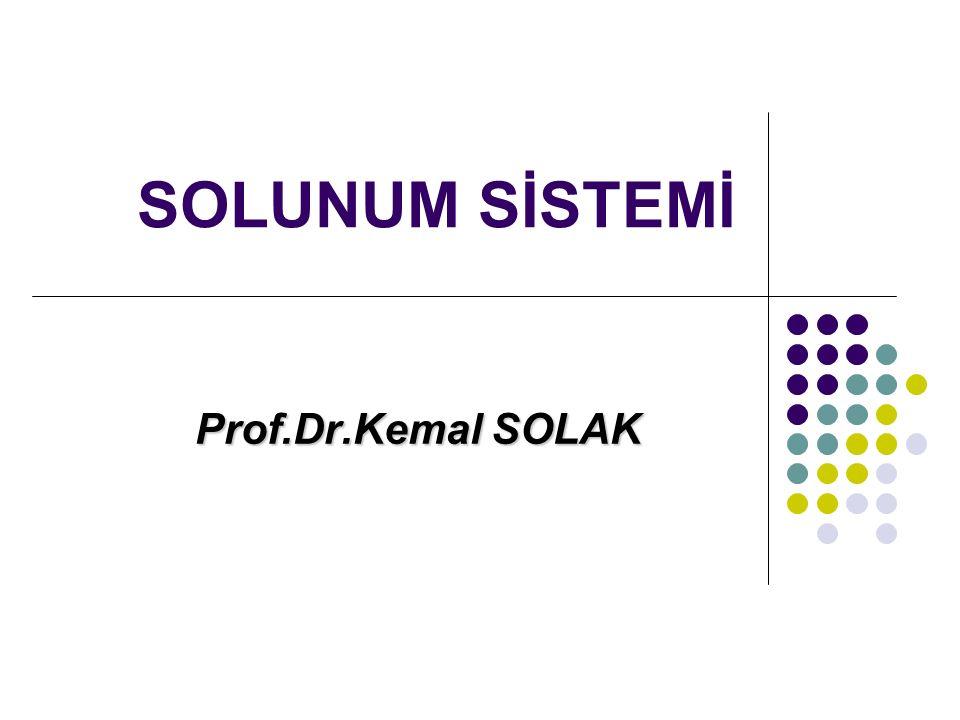 SOLUNUM SİSTEMİ Prof.Dr.Kemal SOLAK