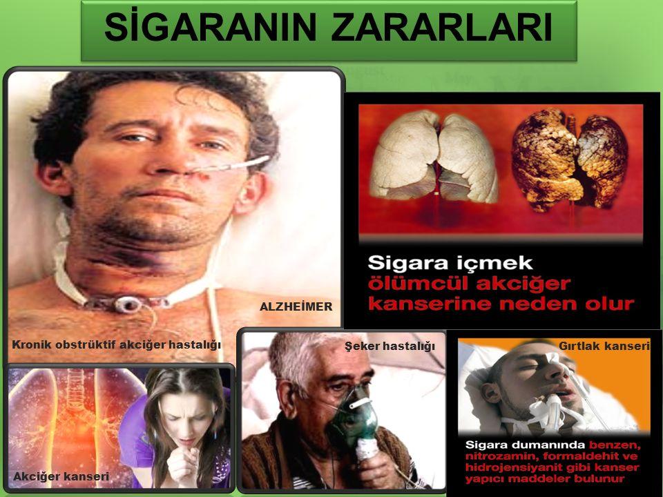 Kronik obstrüktif akciğer hastalığı Akciğer kanseri Şeker hastalığıGırtlak kanseri ALZHEİMER