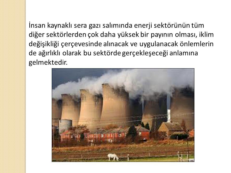 İnsan kaynaklı sera gazı salımında enerji sektörünün tüm diğer sektörlerden çok daha yüksek bir payının olması, iklim değişikliği çerçevesinde alınacak ve uygulanacak önlemlerin de ağırlıklı olarak bu sektörde gerçekleşeceği anlamına gelmektedir.