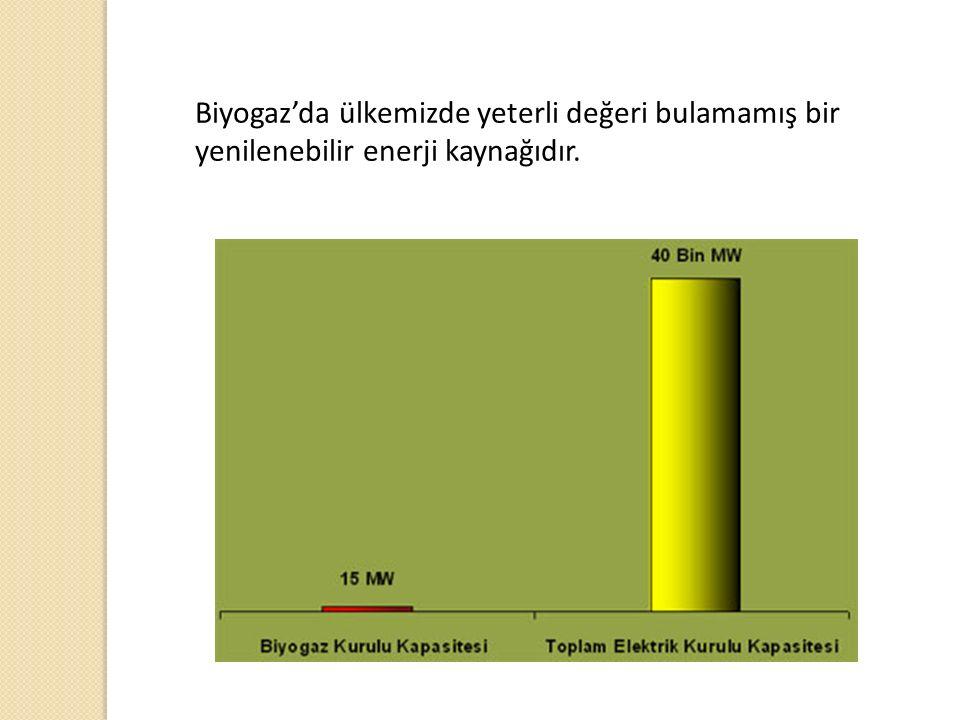 Biyogaz'da ülkemizde yeterli değeri bulamamış bir yenilenebilir enerji kaynağıdır.