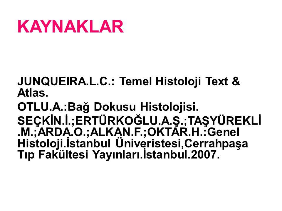 KAYNAKLAR JUNQUEIRA.L.C.: Temel Histoloji Text & Atlas. OTLU.A.:Bağ Dokusu Histolojisi. SEÇKİN.İ.;ERTÜRKOĞLU.A.Ş.;TAŞYÜREKLİ.M.;ARDA.O.;ALKAN.F.;OKTAR