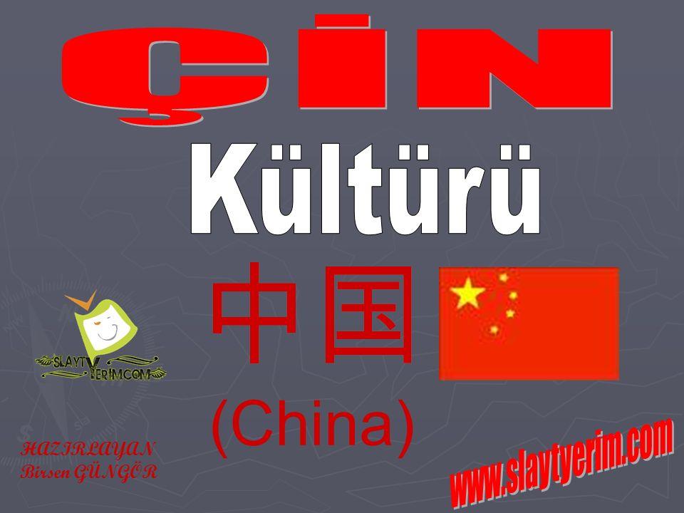 (China) HAZIRLAYAN Birsen GÜNGÖR