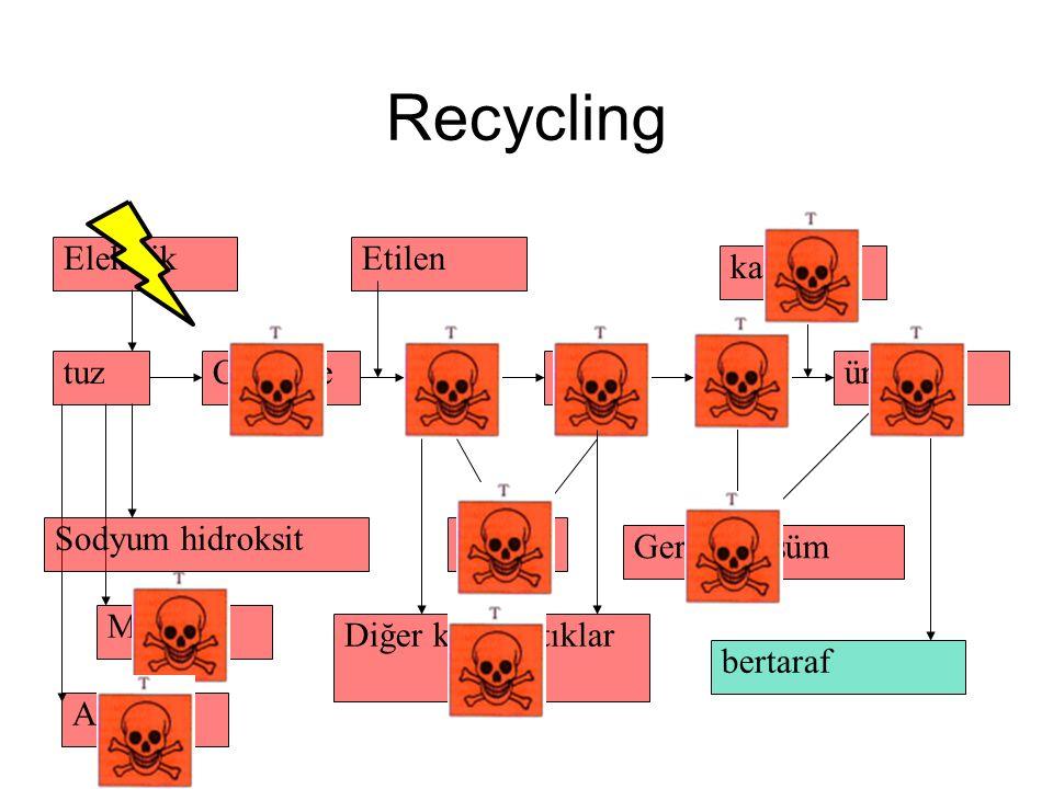 Recycling Mercury Asbestos tuz Elektrik Sodyum hidroksit ChlorineEDCVCM Etilen PVCürünler katkılar Geri dönüşüm bertaraf Dioxin Diğer klorlu atıklar