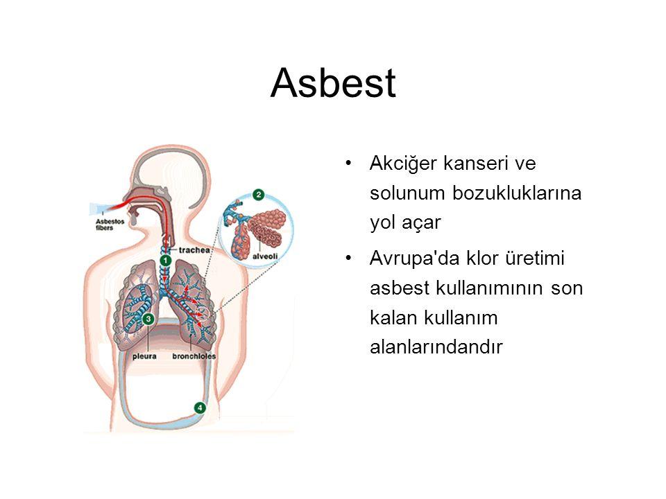 Asbest Akciğer kanseri ve solunum bozukluklarına yol açar Avrupa da klor üretimi asbest kullanımının son kalan kullanım alanlarındandır
