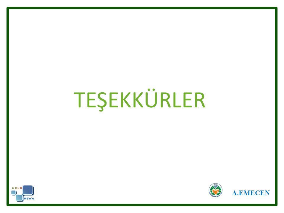 TEŞEKKÜRLER A.EMECEN
