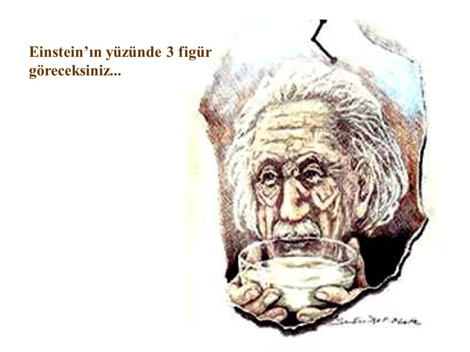 Einstein'ın yüzünde 3 figür göreceksiniz...