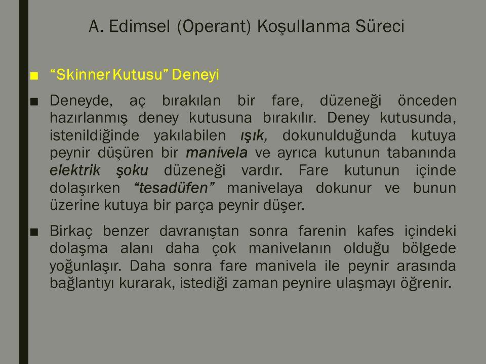 """A. Edimsel (Operant) Koşullanma Süreci ■""""Skinner Kutusu"""" Deneyi ■Deneyde, aç bırakılan bir fare, düzeneği önceden hazırlanmış deney kutusuna bırakılır"""