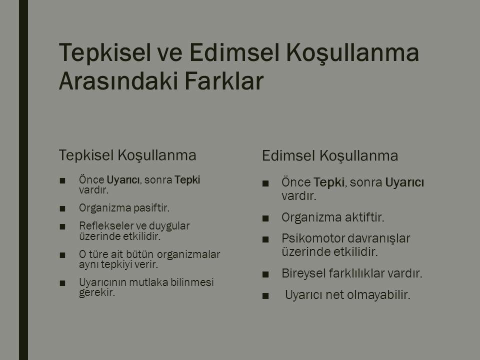 E.Cezanın Olumsuz Etkileri ve Cezaya Alternatif Öneriler ■1.