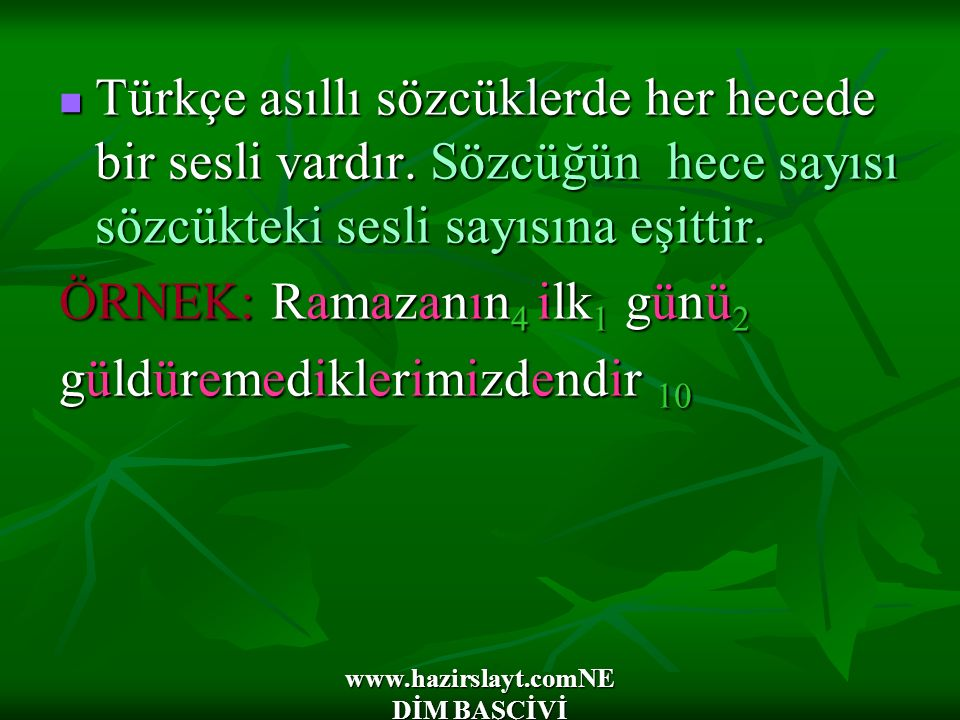 www.hazirslayt.comNE DİM BAŞÇİVİ Türkçe asıllı sözcüklerde her hecede bir sesli vardır. Sözcüğün hece sayısı sözcükteki sesli sayısına eşittir. Türkçe