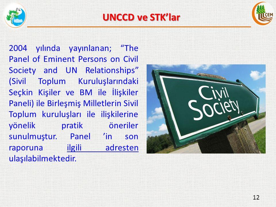 2004 yılında yayınlanan; The Panel of Eminent Persons on Civil Society and UN Relationships (Sivil Toplum Kuruluşlarındaki Seçkin Kişiler ve BM ile İlişkiler Paneli) ile Birleşmiş Milletlerin Sivil Toplum kuruluşları ile ilişkilerine yönelik pratik öneriler sunulmuştur.