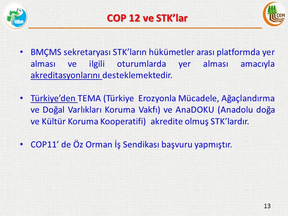 BMÇMS sekretaryası STK'ların hükümetler arası platformda yer alması ve ilgili oturumlarda yer alması amacıyla akreditasyonlarını desteklemektedir.