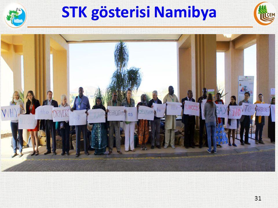 31 STK gösterisi Namibya