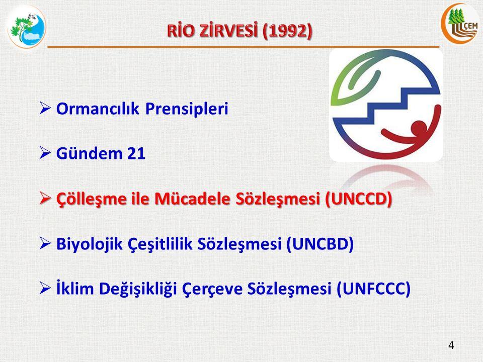  Ormancılık Prensipleri  Gündem 21  Çölleşme ile Mücadele Sözleşmesi (UNCCD)  Biyolojik Çeşitlilik Sözleşmesi (UNCBD)  İklim Değişikliği Çerçeve Sözleşmesi (UNFCCC) 4