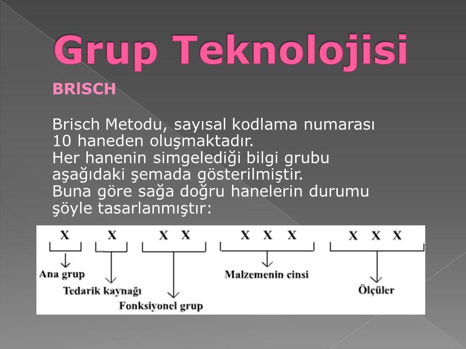 BRlSCH Brisch Metodu, sayısal kodlama numarası 10 haneden oluşmaktadır. Her hanenin simgelediği bilgi grubu aşağıdaki şemada gösterilmiştir. Buna göre