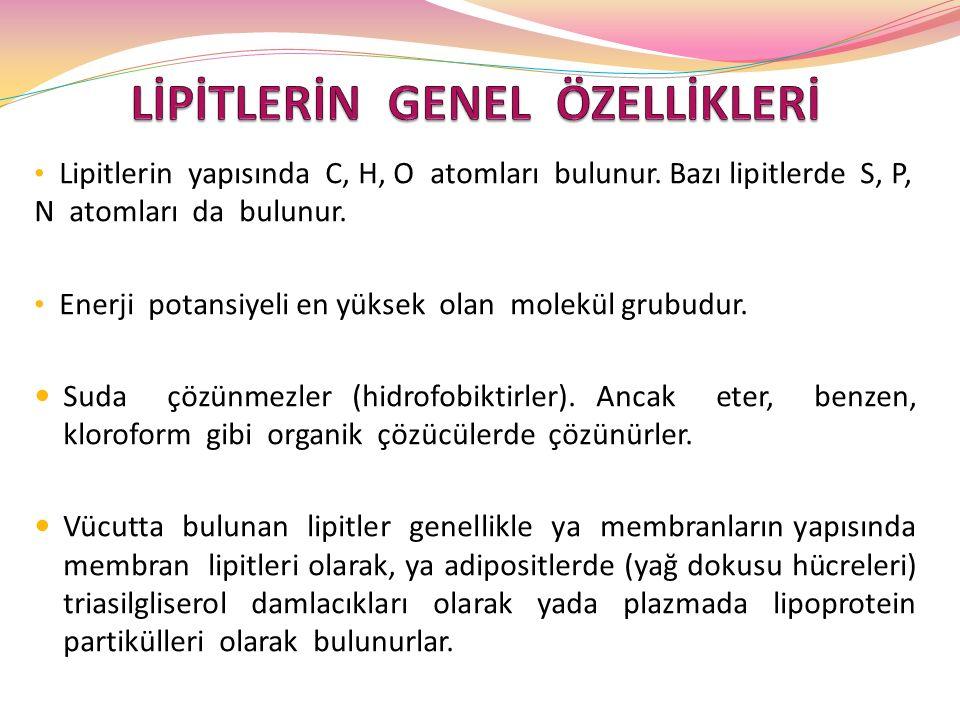 PLAZMA LİPOPROTEİNLERİ PLAZMA LİPOPROTEİNLERİ Lipoprotein partikülleri şunlardır: Şilomikronlar (CM) Çok düşük yoğunluklu lipoproteinler (VLDL) Ara yoğunluklu lipoproteinler (IDL) Düşük yoğunluklu lipoproteinler (LDL) Yüksek yoğunluklu lipoproteinler (HDL)