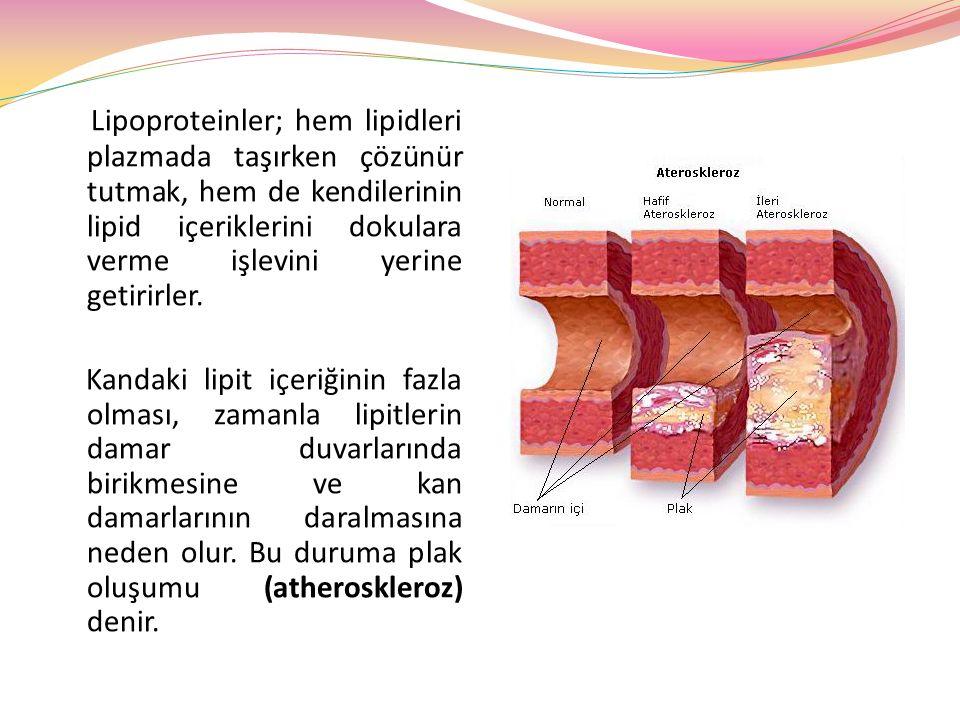 Lipoproteinler; hem lipidleri plazmada taşırken çözünür tutmak, hem de kendilerinin lipid içeriklerini dokulara verme işlevini yerine getirirler. Kand