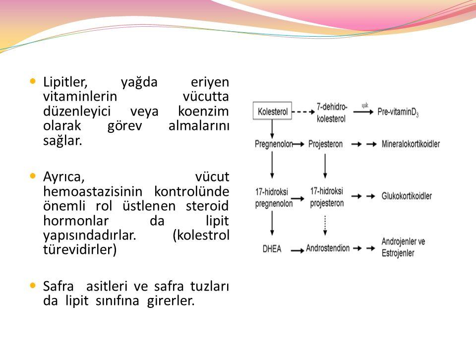 LİPİTLERİN SINIFLANDIRILMASI Yağ asitleri Nötral yağlar (yağ asitlerinin gliserolle yaptıkları mono, di ve trigliseridler)