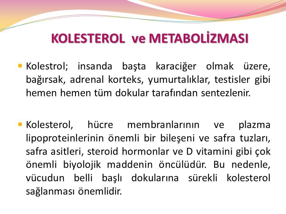 KOLESTEROL ve METABOLİZMASI KOLESTEROL ve METABOLİZMASI Kolestrol; insanda başta karaciğer olmak üzere, bağırsak, adrenal korteks, yumurtalıklar, test