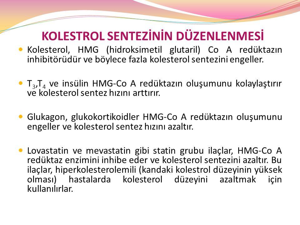 KOLESTROL SENTEZİNİN DÜZENLENMESİ Kolesterol, HMG (hidroksimetil glutaril) Co A redüktazın inhibitörüdür ve böylece fazla kolesterol sentezini engelle