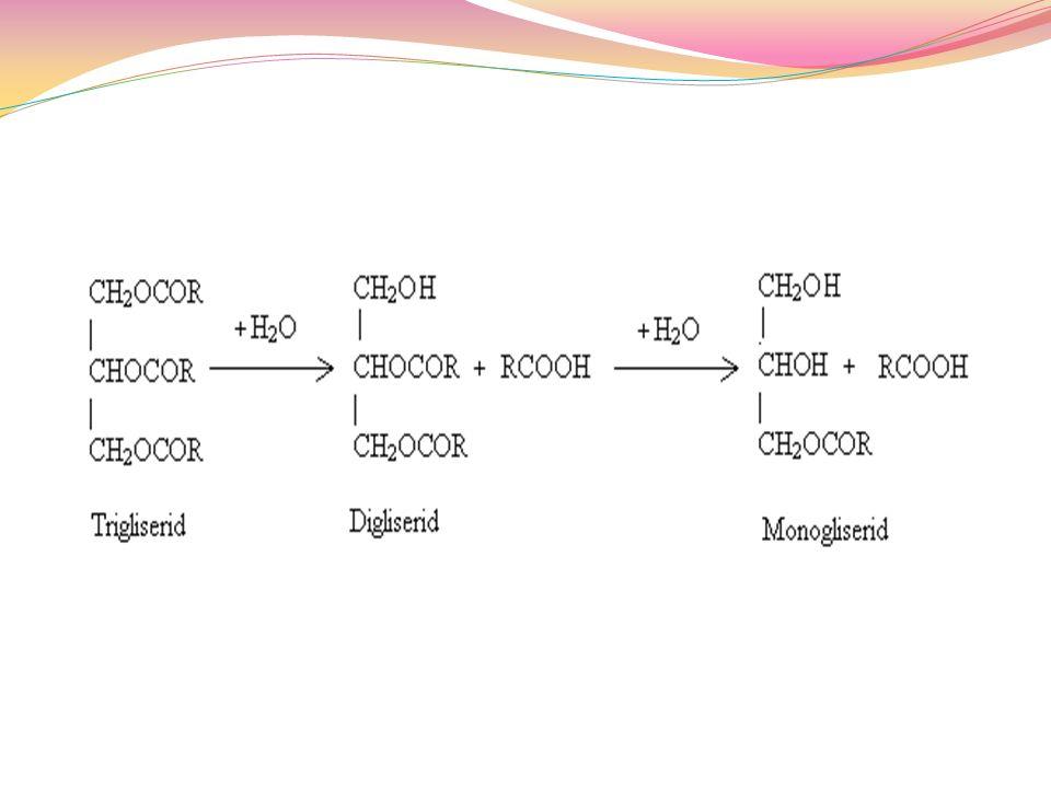 Fosfolipidler Glikolipidler Lipoproteinler (yağ asitlerinin proteinlerle yaptığı bileşikler) Kolestrol ve türevleri (steorid hormonlar, safra tuzları, safra asitleri)