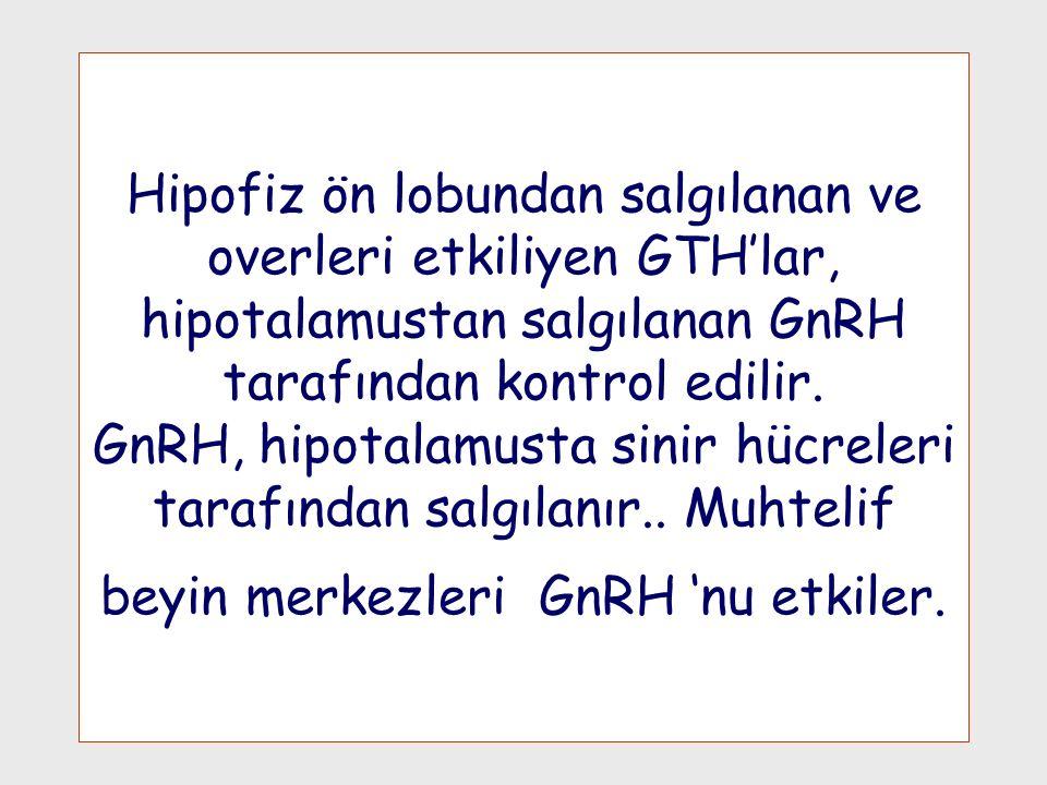 Hipofiz ön lobundan salgılanan ve overleri etkiliyen GTH'lar, hipotalamustan salgılanan GnRH tarafından kontrol edilir. GnRH, hipotalamusta sinir hücr