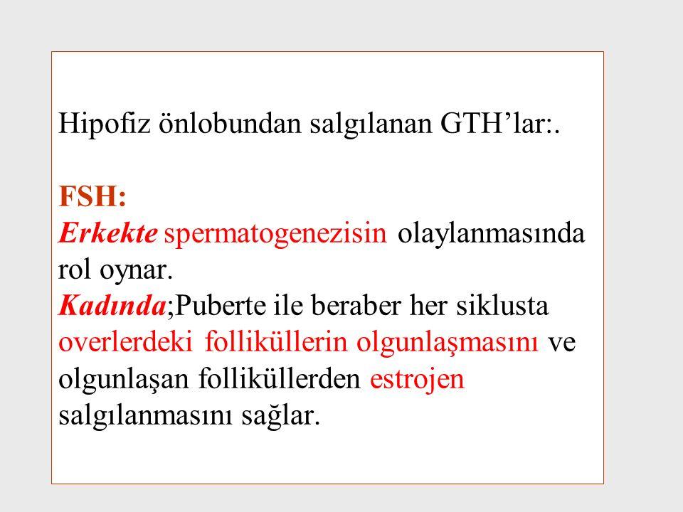 Hipofiz önlobundan salgılanan GTH'lar:. FSH: Erkekte spermatogenezisin olaylanmasında rol oynar. Kadında;Puberte ile beraber her siklusta overlerdeki