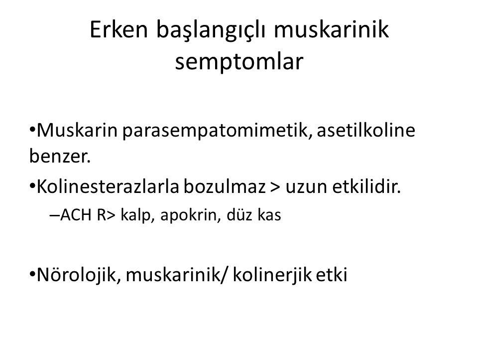 Erken başlangıçlı muskarinik semptomlar Muskarin parasempatomimetik, asetilkoline benzer. Kolinesterazlarla bozulmaz > uzun etkilidir. – ACH R> kalp,