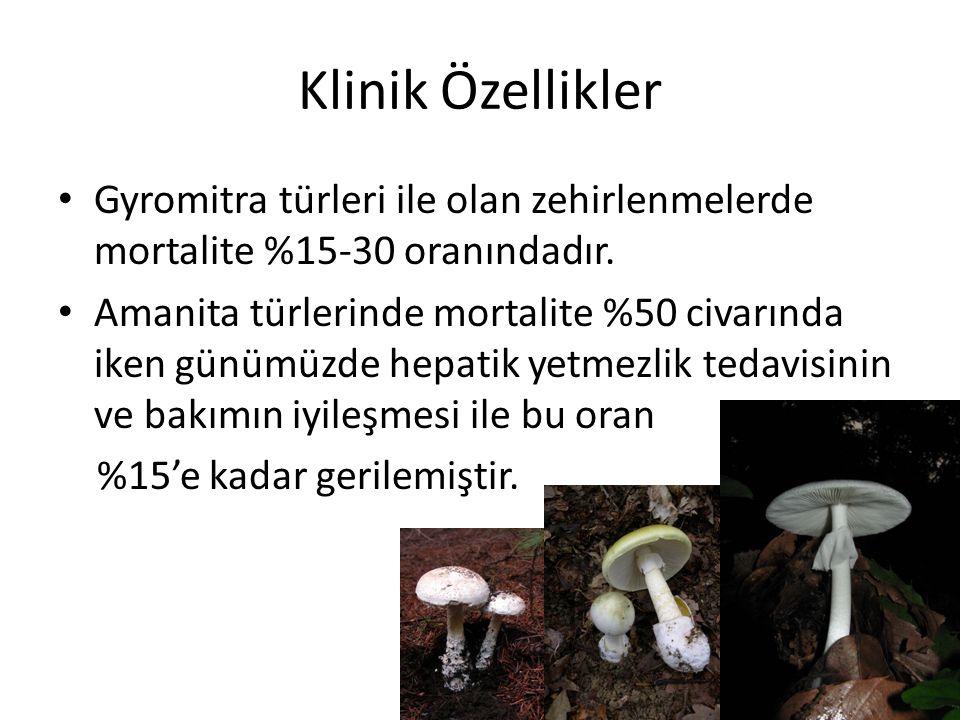Klinik Özellikler Gyromitra türleri ile olan zehirlenmelerde mortalite %15-30 oranındadır. Amanita türlerinde mortalite %50 civarında iken günümüzde h