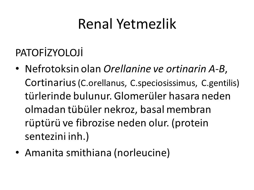 Renal Yetmezlik PATOFİZYOLOJİ Nefrotoksin olan Orellanine ve ortinarin A-B, Cortinarius (C.orellanus, C.speciosissimus, C.gentilis) türlerinde bulunur